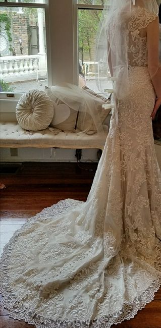 Who else loves lace?  Show off your lace dresses and/or veils! - 2