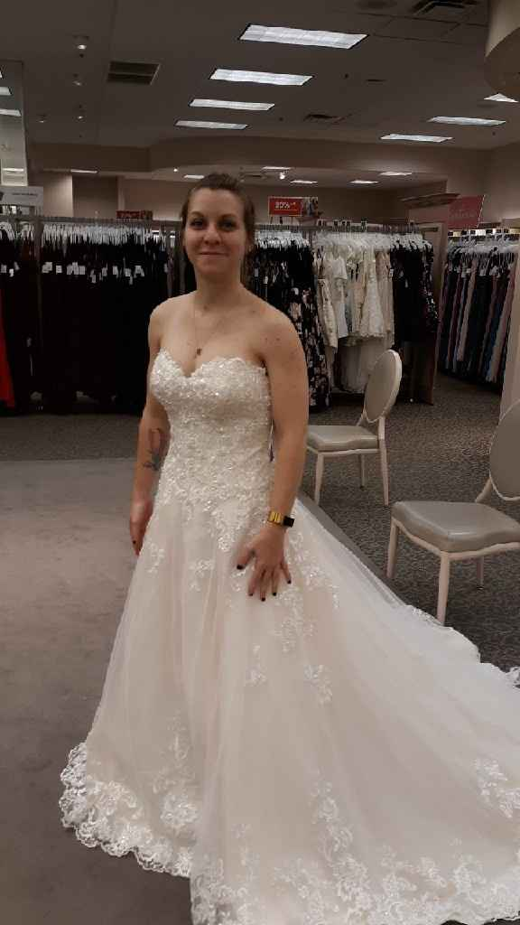 My Dress Came in So Unexpectedly Quickly!! - 1