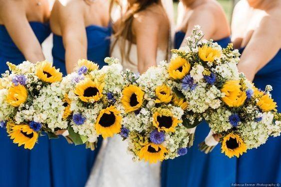 Calling all Sunflower lovers! 1