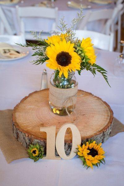 Calling all Sunflower lovers! 2