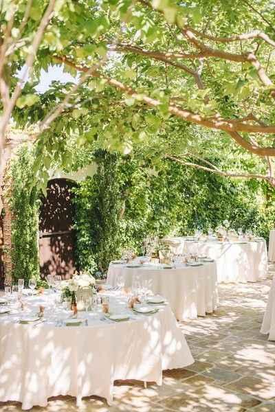 Outdoor Reception Venue Under Tree