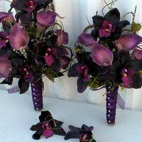 All Purple