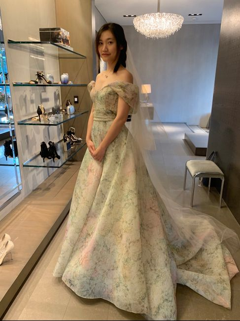 i eventually find the one dress - 5