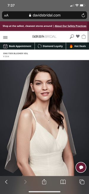Veil Types - What are you wearing? 8