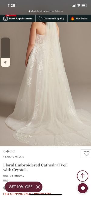 Veil Types - What are you wearing? 9