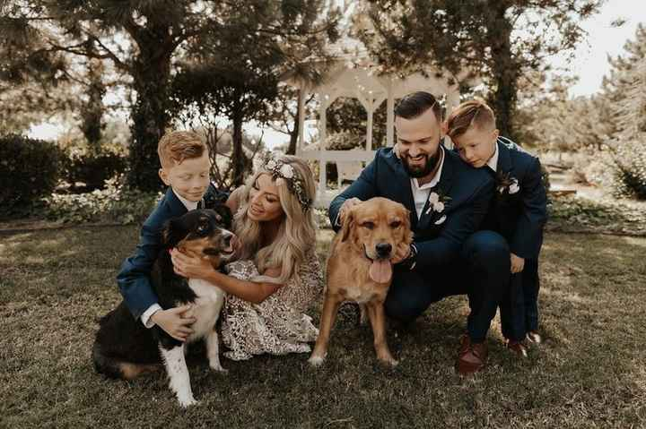 family on wedding day with dogs