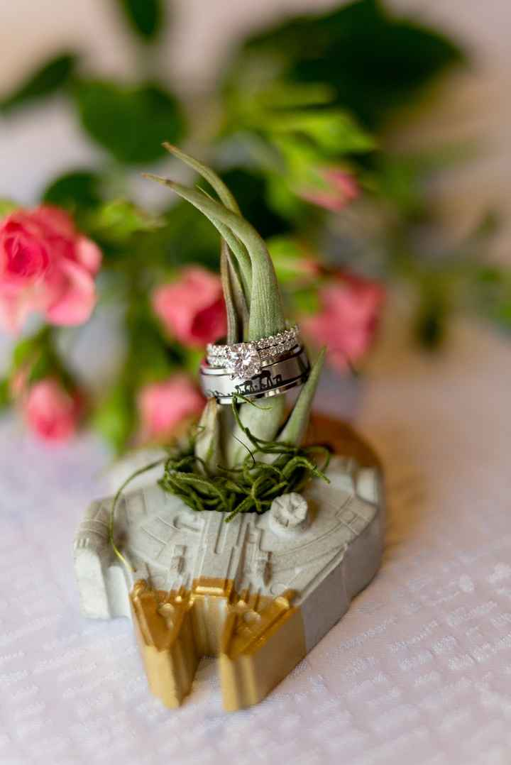 Probam! Sneak Peaks - The Coronavirus Wedding! - 5