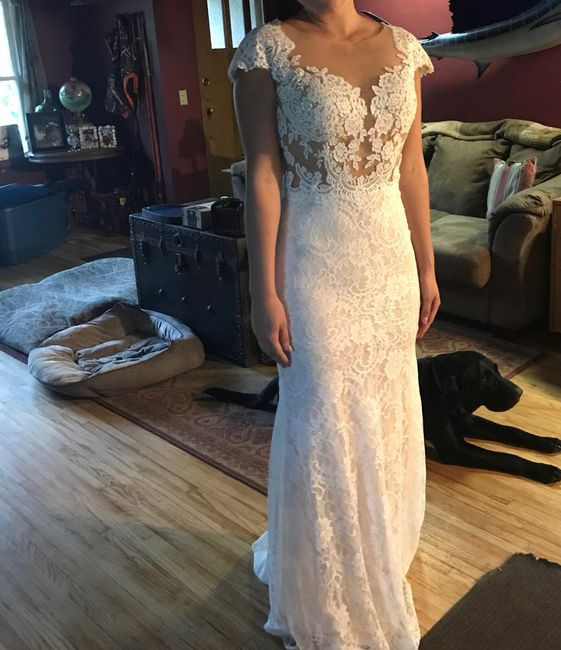 Dress Help! Please post your gowns!! 21