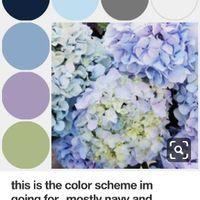 Colors - 1