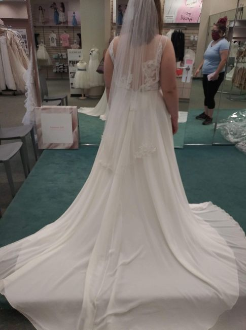 Dresses from David's Bridal 9