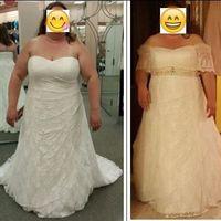 Size 22 & 24 brides!