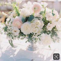 Torn between wedding vibes!! Help!! - 1