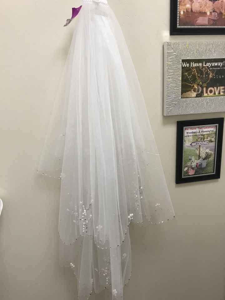 Veil or no veil? - 1
