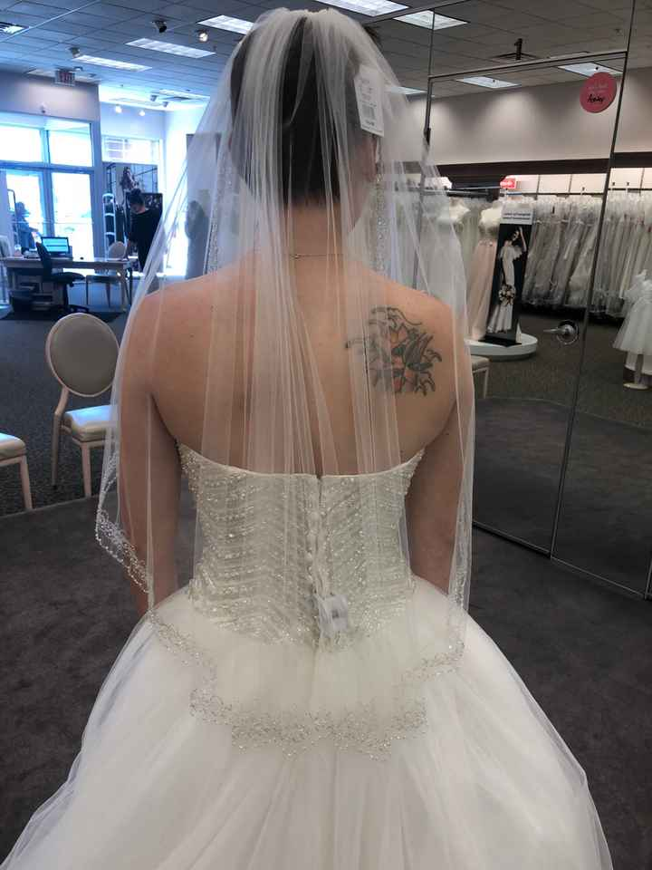 Your Veil: What, Where, How Much? - 1