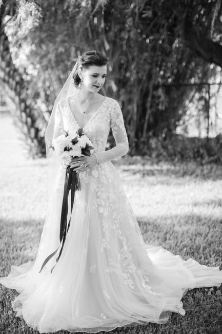Dresses from David's Bridal 4