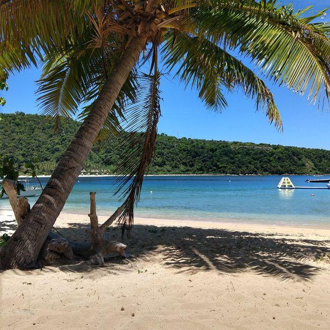 Honeymoon in Fiji 1