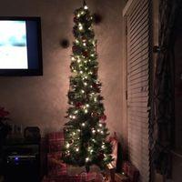 NWR-show me your Xmas trees