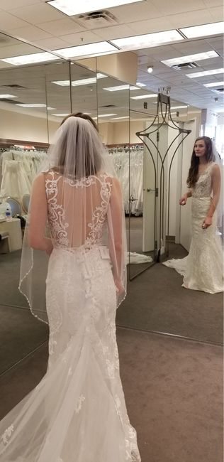 How much did you spend on your wedding dress!? - 1