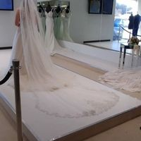 Shows off Veil and Train