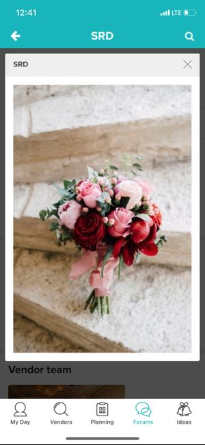 Which Winter Wedding Bouquet? 11