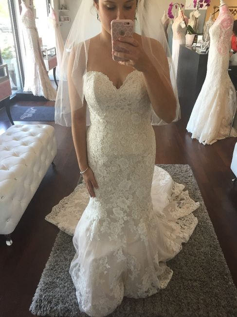 Ivory Lace With Champagne Underlay Having Issues Finding