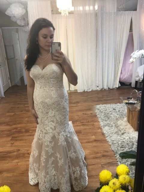 Done With Last Dress Fitting Wedding End Of Month Update