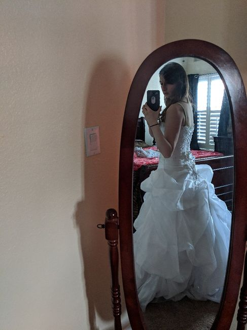 Did you say yes to the dress? 4