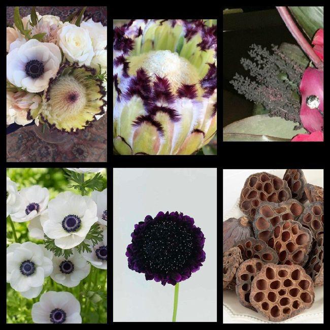Florist Appt on October 3rd! 4