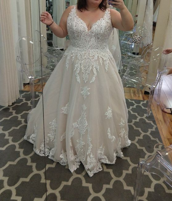 Dress Help! Please post your gowns!! 13