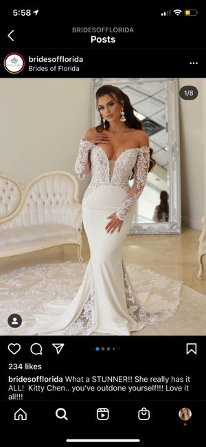Help! How much did it cost you to add sleeves to your wedding dress? 1