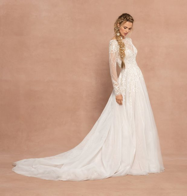 Hayley Paige Spring 2020 trunk show...this Weekend!!! 1
