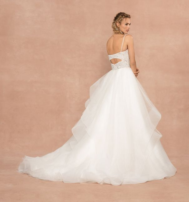 Hayley Paige Spring 2020 trunk show...this Weekend!!! 6