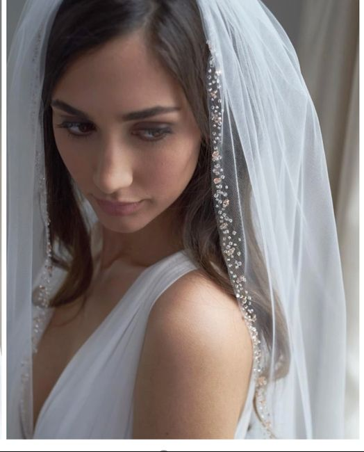 Veil with rose gold? 1