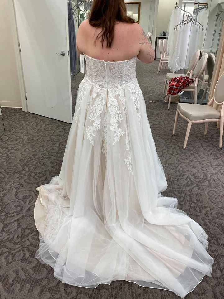 Let Me See Your Dresses!! - 1