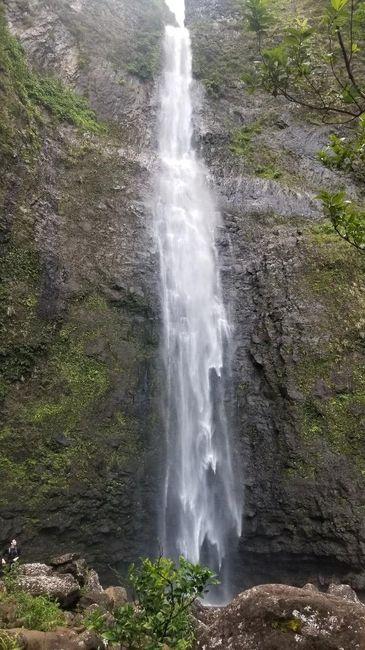 Hawaii Honeymoon Help! 3