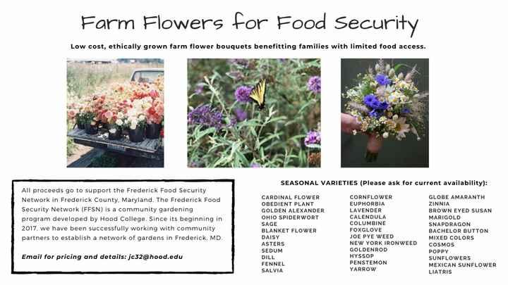 Affordable flowers under 1k in Northern Virginia - 1