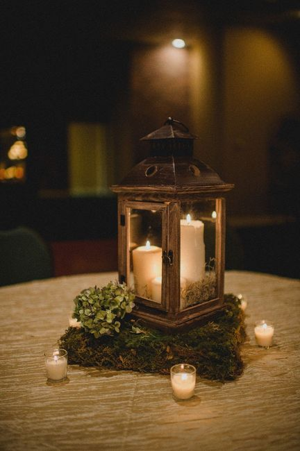 diy Enchanted Forest Themed Wedding Decorations 2