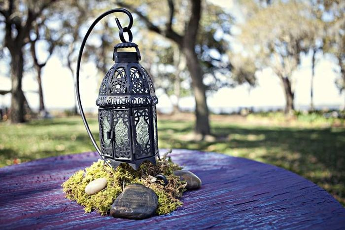 diy Enchanted Forest Themed Wedding Decorations 3
