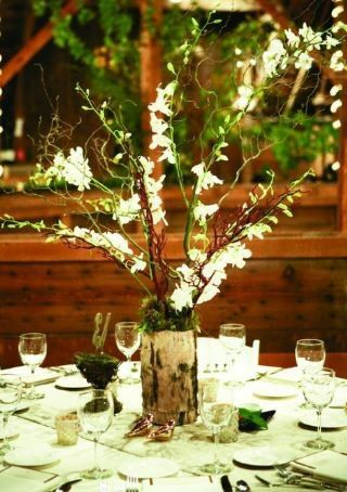 diy Enchanted Forest Themed Wedding Decorations 1