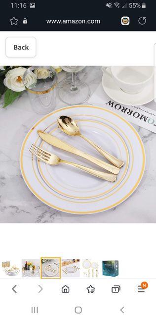 Disposable dinnerware? 1