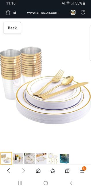 Disposable dinnerware? 2