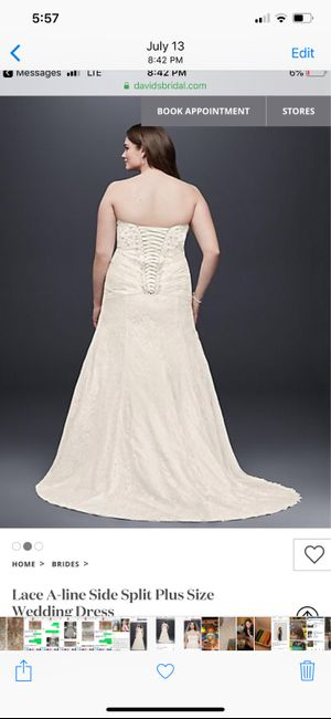 Are you adding a bustle to your dress? Advice needed. 2