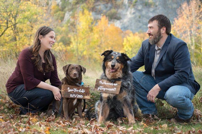 Anyone Having Their Dog At Their Wedding? 2