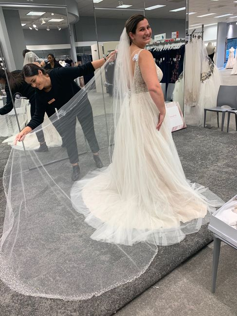 Ivory dress with champagne veil 4