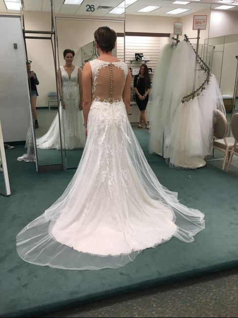 Dresses from David's Bridal 3