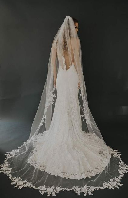 Unveiling the Veil 7