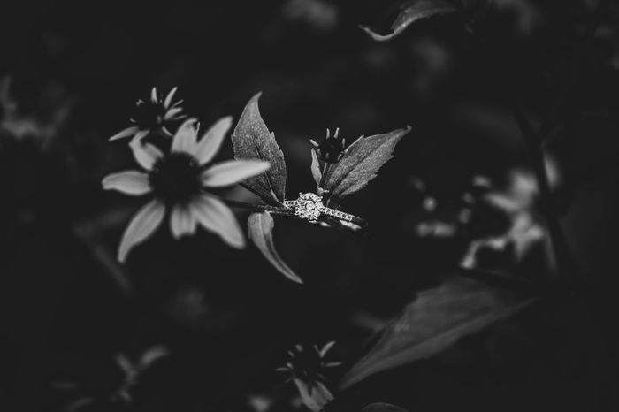 My engagement photos are done *warning there is alot of them* lol 15