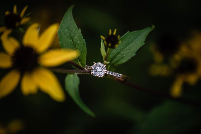 My engagement photos are done *warning there is alot of them* lol 16