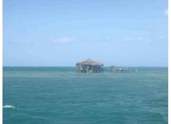 Negril or Montego Bay?!