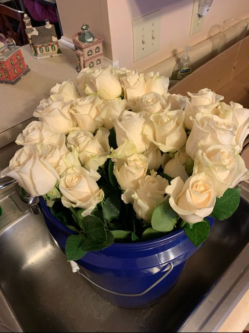 Sam's Club Flowers (picture Heavy) 3